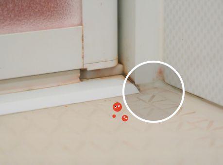 浴室の床に生えた赤カビ