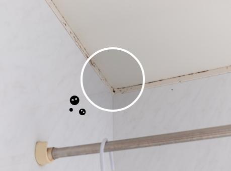 浴室に根を生やした黒カビ