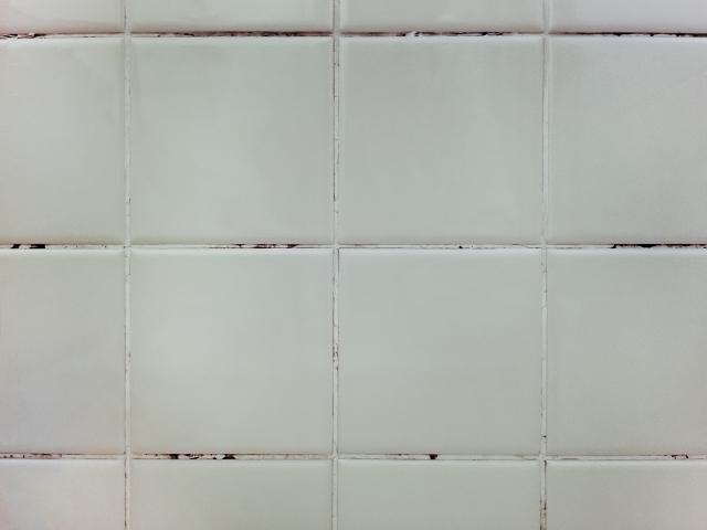 お風呂場についた黒カビ汚れのお掃除〜カビが生えてしまう原因まで解説