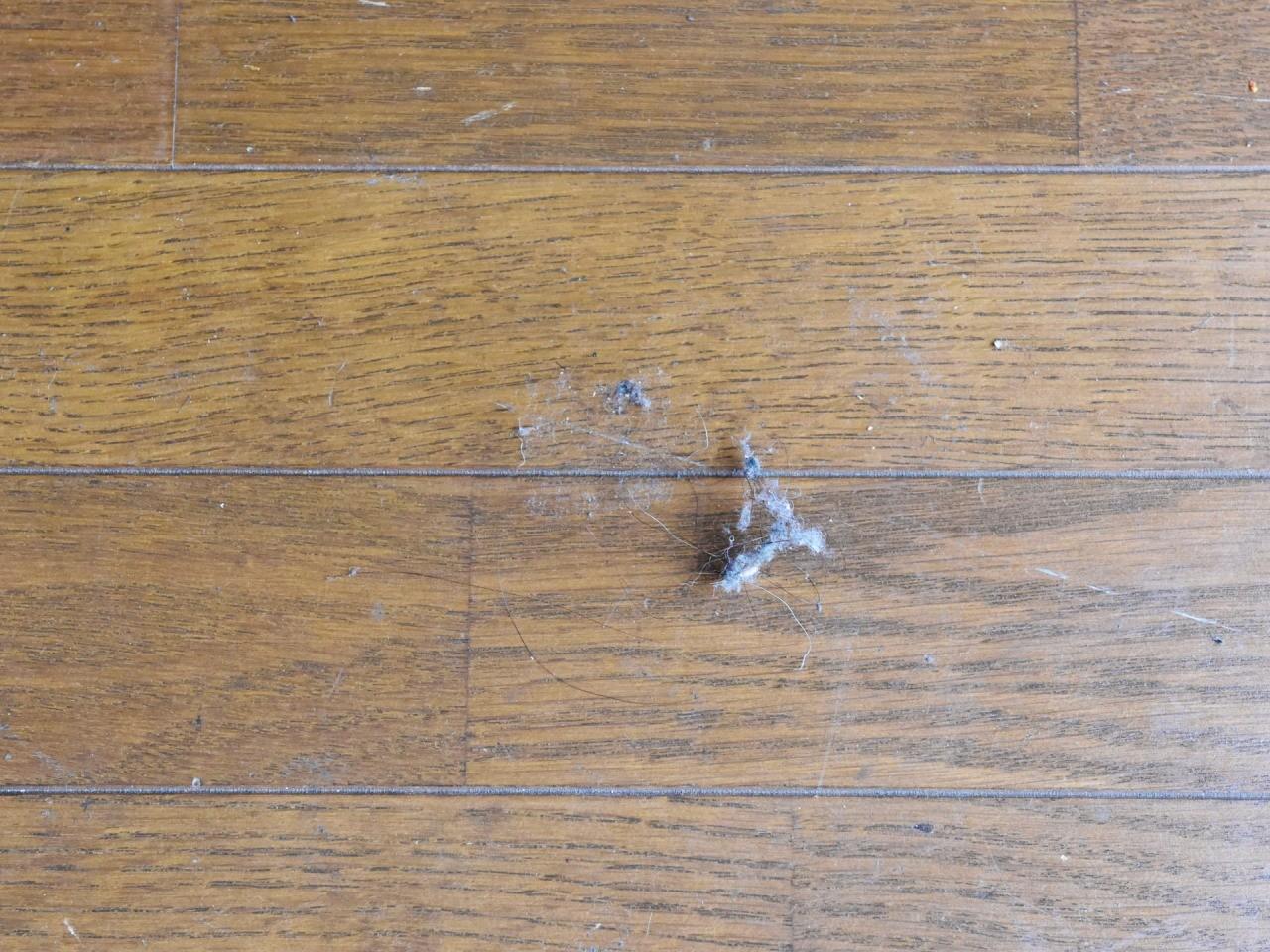 ホコリのお掃除〜便利なアイテムからホコリが溜まりにくくなる工夫までご紹介!